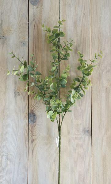 Eukalyptus Zweig 65cm mit Stiel