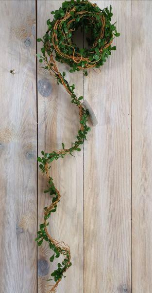 Reben-Buchsbaum-Girlande ab 1m